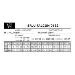 SRJJ FALCON 0132