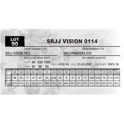 SRJJ VISION 0114