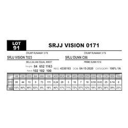 SRJJ VISION 0171