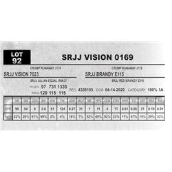 SRJJ VISION 0169