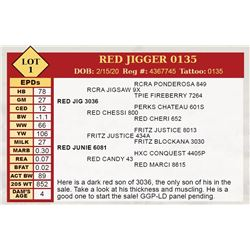 RED JIGGER 0135