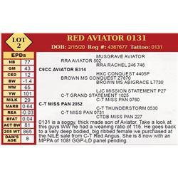 RED AVIATOR 0131