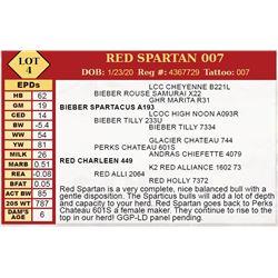 RED SPARTAN 007