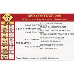 RED CONTOUR 006
