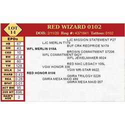 RED WIZARD 0102