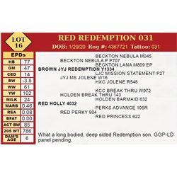 RED REDEMPTION 031