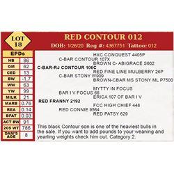 RED CONTOUR 012