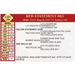 RED STATEMENT 065