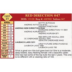 RED DIRECTION 047