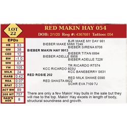 RED MAKIN HAY 054