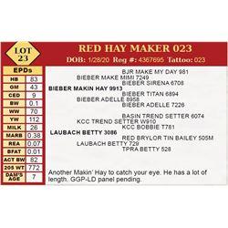 RED HAY MAKER 023