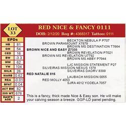 RED NICE & FANCY 0111