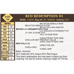 RED REDEMPTION 01