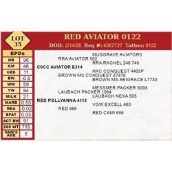 RED AVIATOR 0122