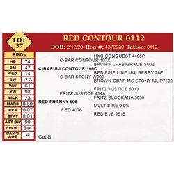 RED CONTOUR 0112
