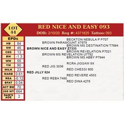 RED NICE AND EASY 093