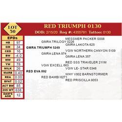 RED TRIUMPH 0130