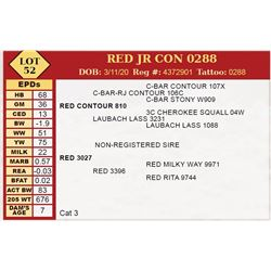 RED JR CON 0288