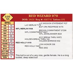 RED WIZARD 070
