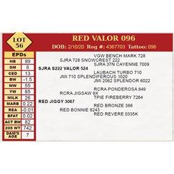 RED VALOR 096
