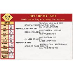 RED REMY 0241