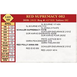 RED SUPREMACY 082