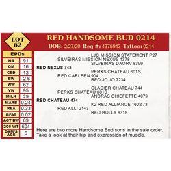RED HANDSOME BUD 0214