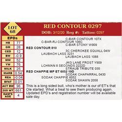 RED CONTOUR 0297