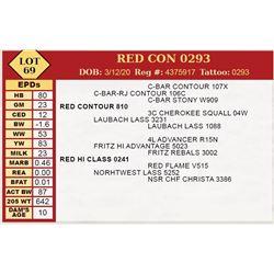 RED CON 0293