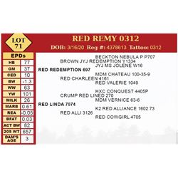 RED REMY 0312