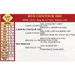 RED CONTOUR 069
