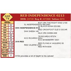 RED INDEPENDENCE 0213