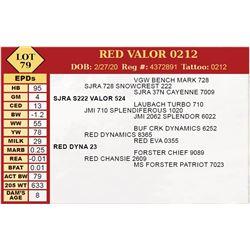 RED VALOR 0212