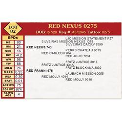 RED NEXUS 0275