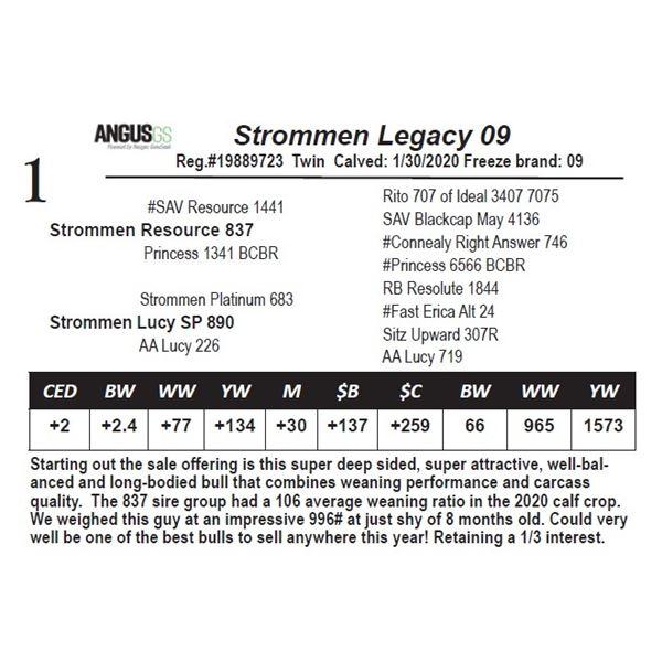 Strommen Legacy 09