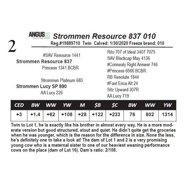 Strommen Resource 837 010