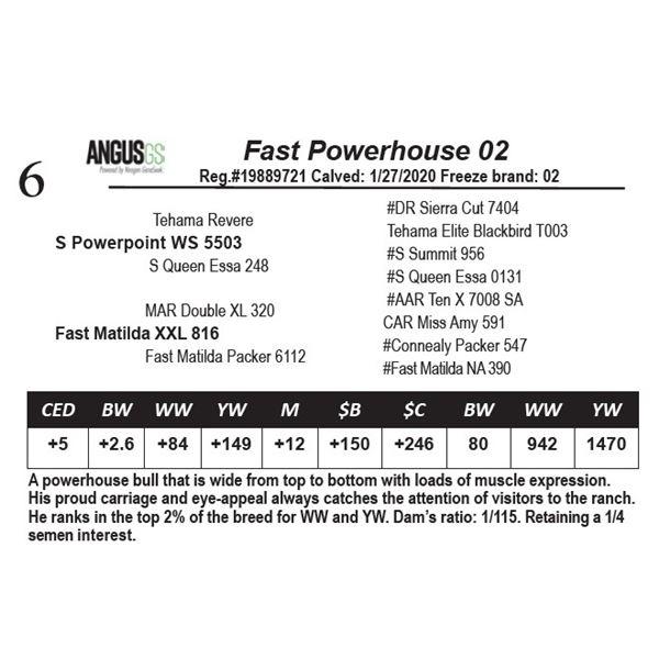 Fast Powerhouse 02