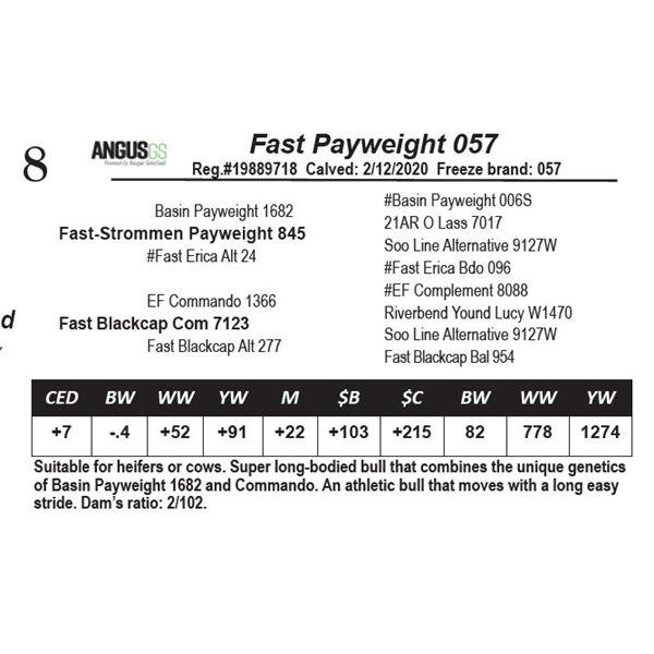 Fast Payweight 057