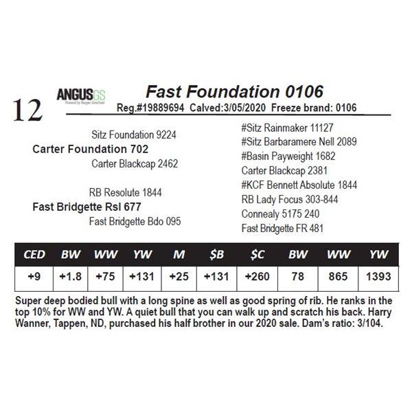 Fast Foundation 0106