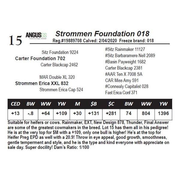 Strommen Foundation 018