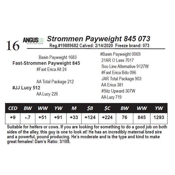 Strommen Payweight 845 073