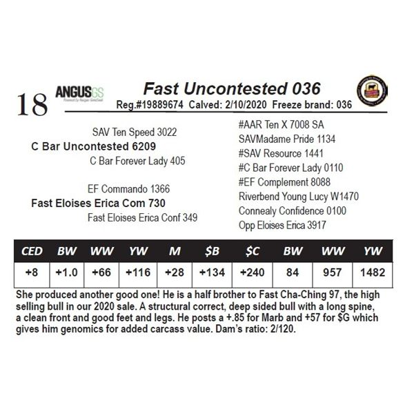 Fast Uncontested 036
