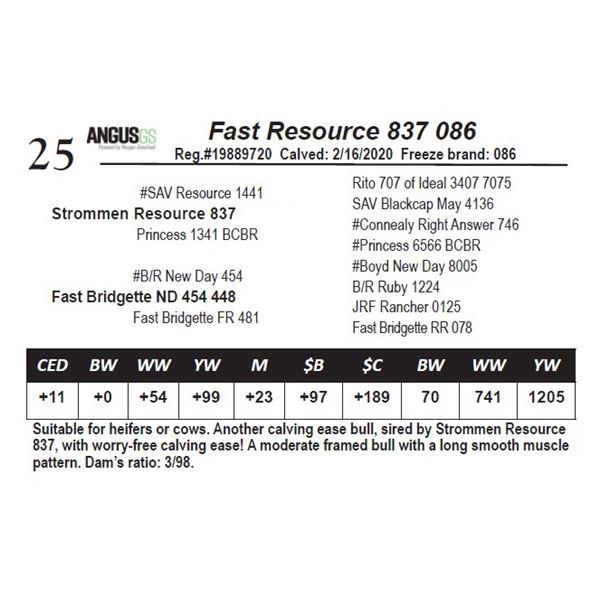 Fast Resource 837 086