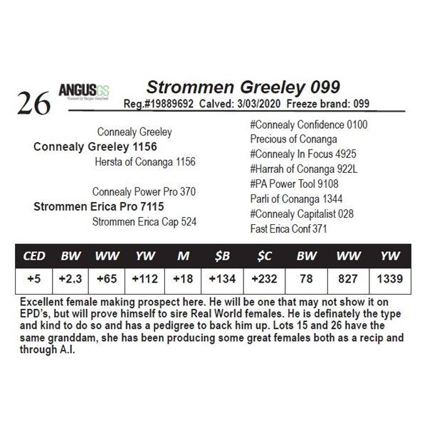 Strommen Greeley 099