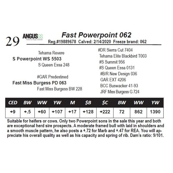 Fast Powerpoint 062