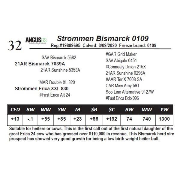 Strommen Bismarck 0109