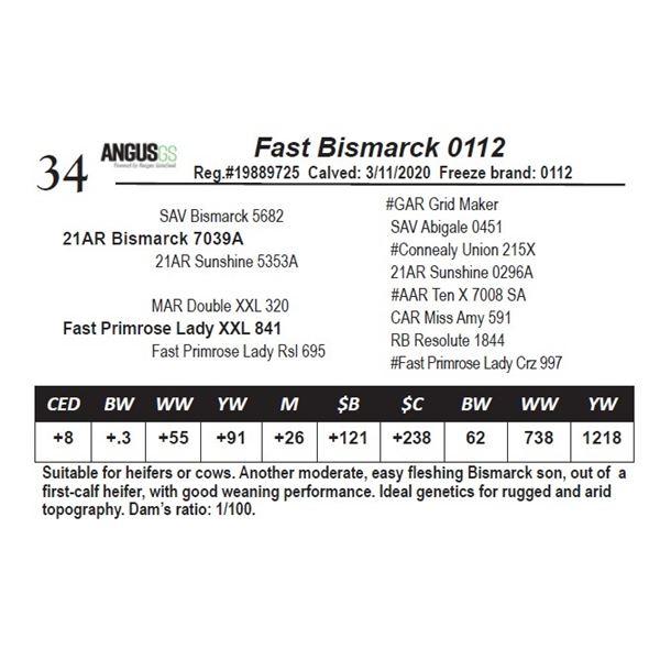 Fast Bismarck 0112