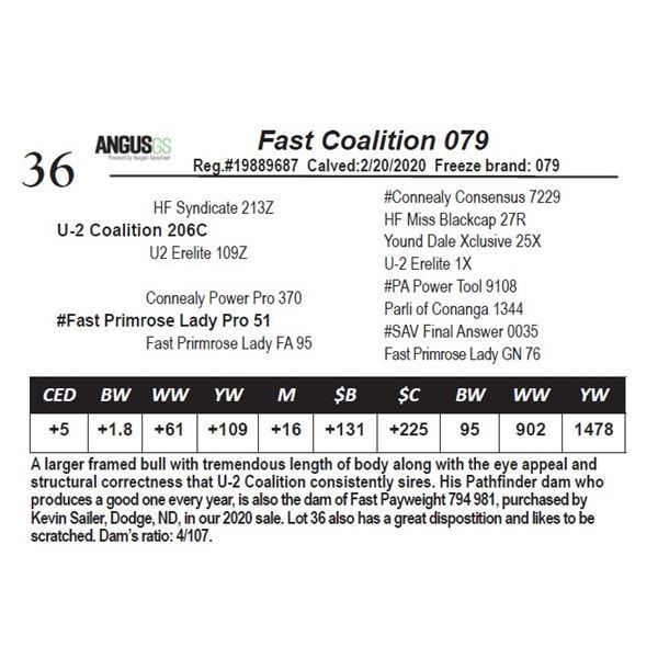 Fast Coalition 079