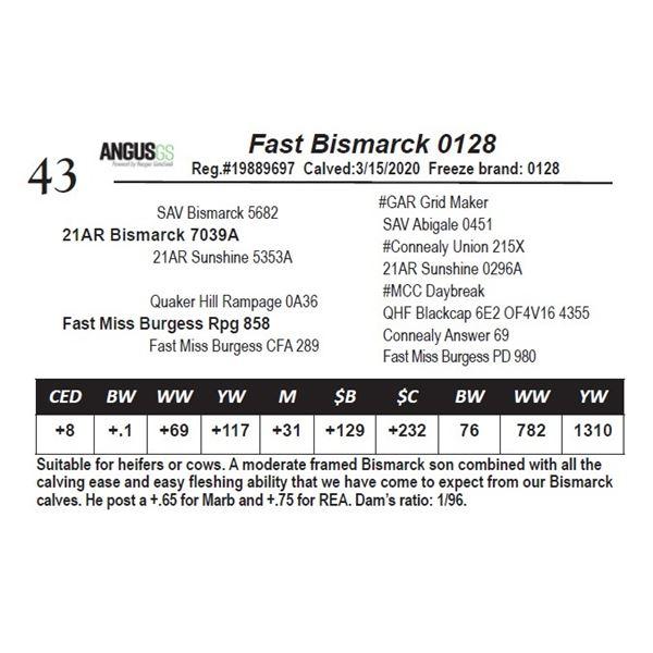 Fast Bismarck 0128