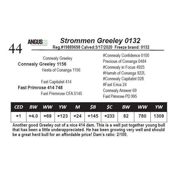 Strommen Greeley 0132